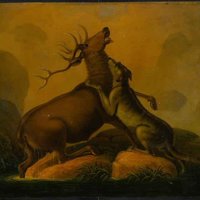 Jeleň so psom