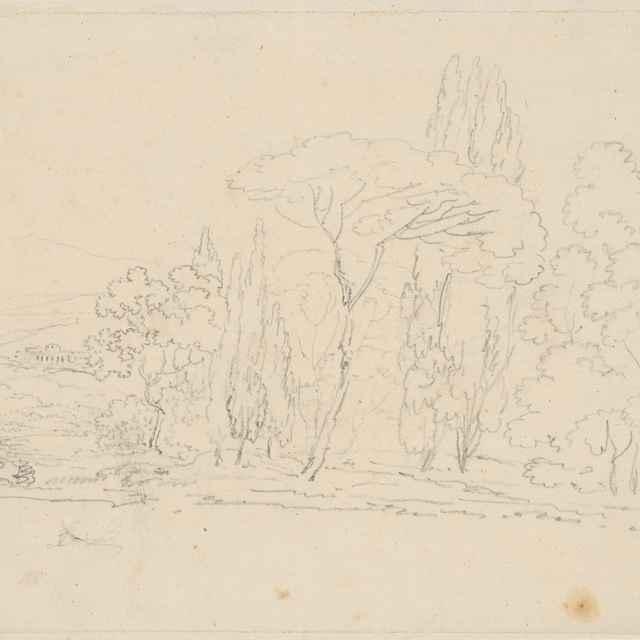 Krajina so stromami - Camuccini, Vincenzo