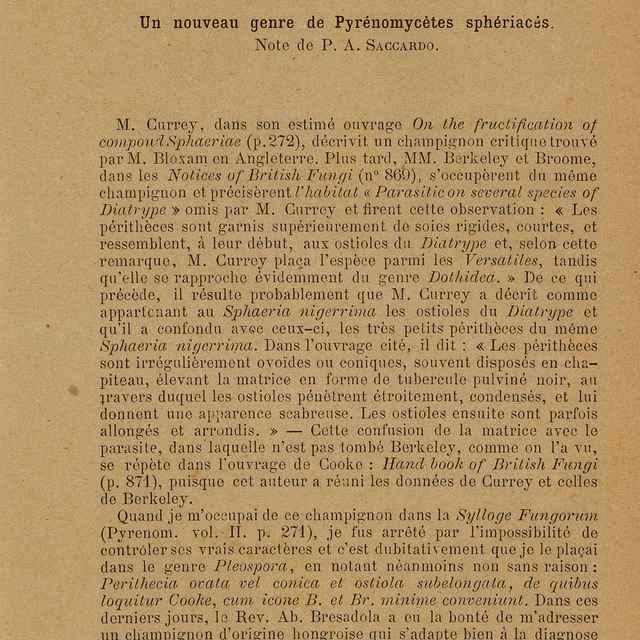 Un nouveau genre de Pyrénomycétes sphériacés - Saccardo, Pier Andrea