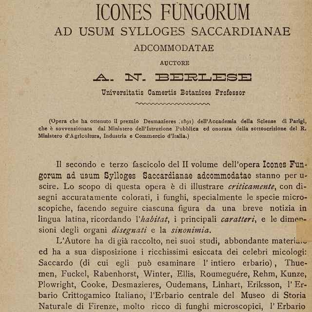 Icones Fungorum Ad Usum Sylloges Saccardianae Adcommodatae - Berlese, Augusto Napoleone
