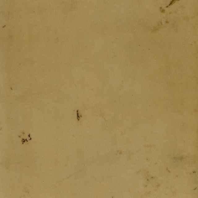 De Gentivm Aliqvot Migrationibvs Sedibvs Fixis, Reliqviis, linguarumque initiis & immutationibus ac dialectis, Libri XII. - Lazius, Wolfgang