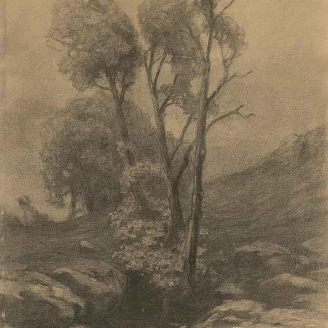 Štúdia stromov pri potoku - Čordák, Ľudovít
