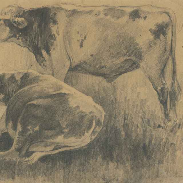 Štúdia kráv - Čordák, Ľudovít