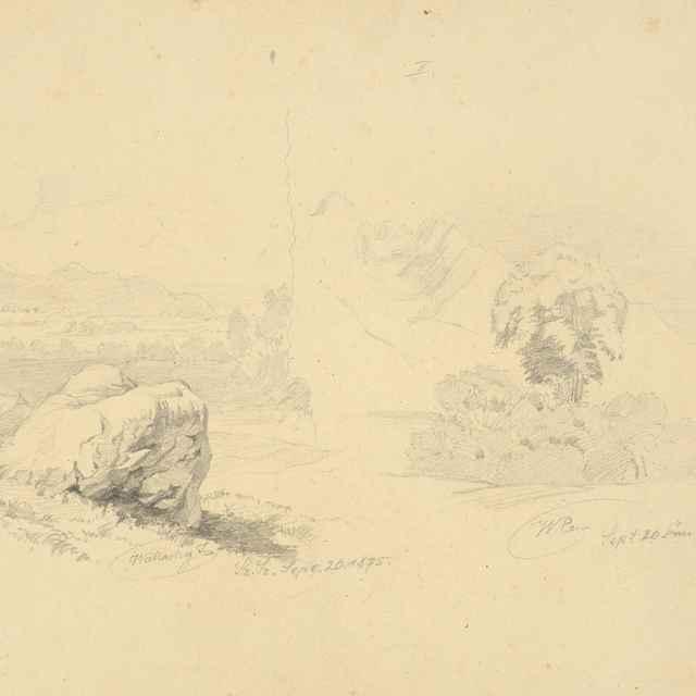 Štúdia skaly a stromov - Wallachy, Eugen