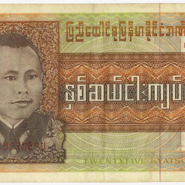 Bankovka 25 kyats (flóra, fauna)