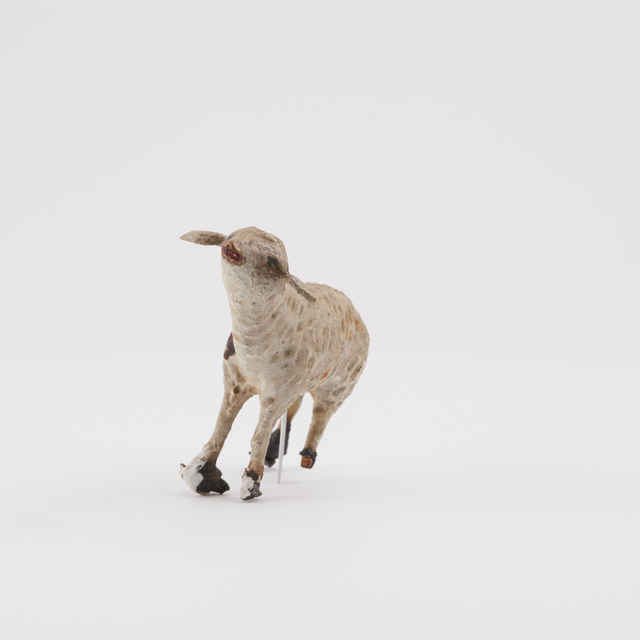 betlehem - ovca