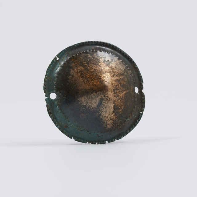 Puklička bronzová