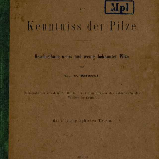 Beiträge zur Kenntniss der Pilze - Niessl, Gustav
