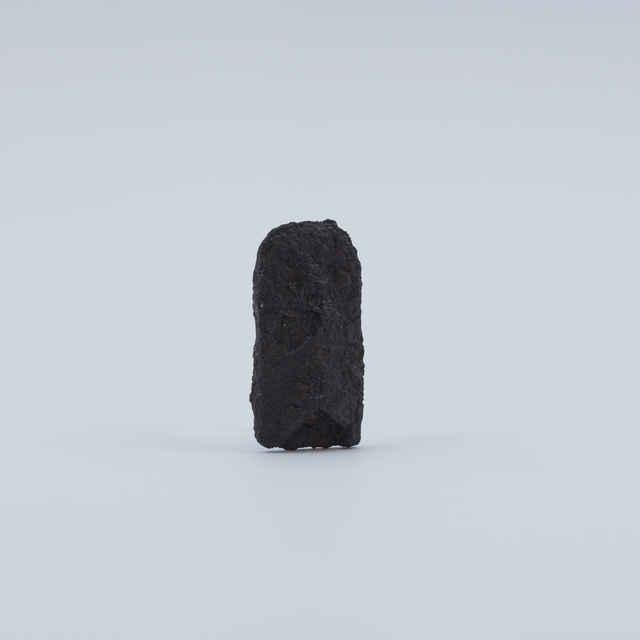 Nákončie železné, fragment
