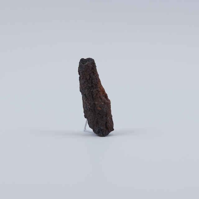 Strelka železná, fragment