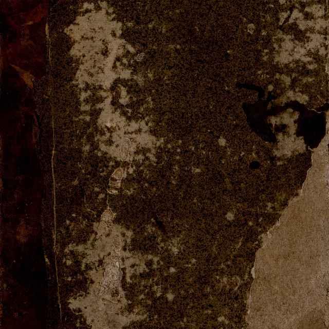 Der Mittnảchtigen Lảnder, Von allerley Thủn, Wesens, Condition, Sitten, Gebreiichen, Aber glauden, Vnderweisung, Vebung, Regiment, Narung, Kriegßrüstung, auch allerley Zeiig, Jnstrumenten, Gebeiiwen, Bergwerck, Metal, vñ andern Wunderbarlichen sachen, Warhafftige beschreibung, Deßgleichen auch von allerley Vierfủssigen, vnd andern Thieren, so auff, vnd im Erdrrich, Wasser vnd Lufft, gedachter orten leben vnd schweben thůn, [etc.] Vnd ist solch Werck nicht allem lieblich vnd kurtzweilig, sonder auch vast nützlich zůlesen, vnd zůwissen, dann es mancherley Fremebder, andern Landen, vnd Nationen de Welt, vnbekanten, vnd nie erhỏzten sachen, so auch noch bißher von keinem Geschichtschreiber jhemals alf[ø] manigfaltig an tag geben, Welcher beschreibung jede Capitel mit eigentlichen vnd zierlichen Figuren herauß gestrichen, das der Leser den innhallt so wol mit eiisserlichen sinnen der Augen, als mit innerlichem verstandt begreiffen vnd fassen mag. Auß selb eigner erfahrnuß viler Jar lang, zů Wasser vnd Landt, zůsamen verzeichnet, vnd beschryben durch weilandt den Hochwürdigsten Herrn, Herrn Olavm Magnvm auß Gothien,Ertzbischoffen zů Vpsal in Schweden, vnd Primaten in Gothien, Hernach aber ins Hochteütsch gebracht, vnd mit fleiß trans feriert, Durch Johann Baptisten Ficklern, von Weyl, vor dem Schwartzwald, der Rechten Doctor,vnd diser zeyt des Hochwürdigsten Fürsten vnd Herzn, Herzn Johann Jacoben Ertzbischoffen zů Saltzburg, des Stůls zů Rom Legaten, Khat vnd Dienern. - Magnus, Olaus