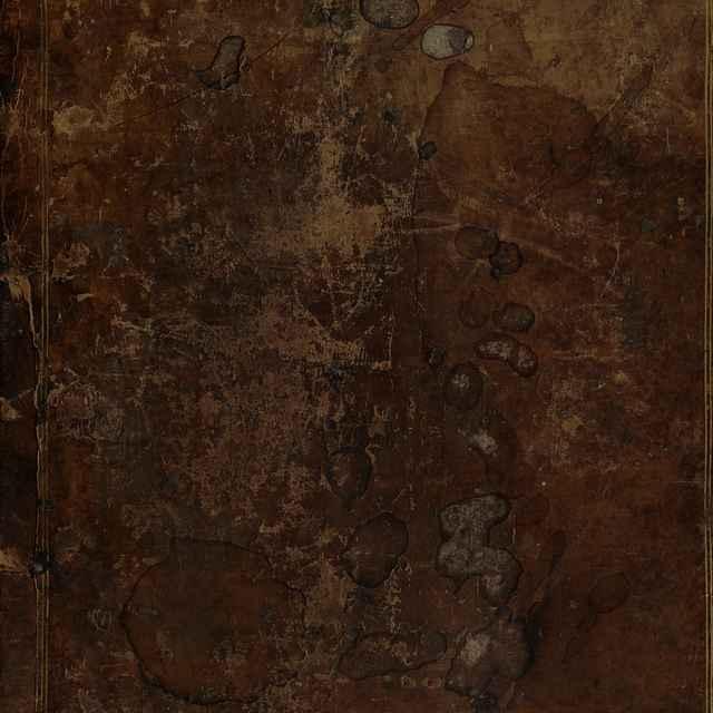 [Phlabiou Iōsēpou Hierosolymitou hiereōs Ta euriskomena]= Flavii Josephi Hierosolymitani Sacerdotis Opera quae exstant, nempe: Antiqvitatvm Ivdaicarvm Libri XX. Sigismundo Gelenio interprete. De Bello Ivdaico Libri VII. (interprete, vt v lgo creditum est, Rufino Aquileiensi) quibus Appendicis loco accessit De vita Iosephi. Adversus Apionem Libri II. ex interpretatione Rufini à Gelenio emendata. De Machabaeis, seu de imperio rationis Liber I. cum paraphasi Erasmi Roterodami. Quae Graecolatina Editio Graecorum Palatinae Bibliothecae manuscriptorum Codicum collatione castigatior facta est. Cum Indice Locvpletissimo. - Josephus Flavius,