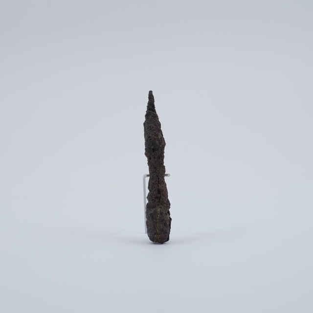 Strelka železná
