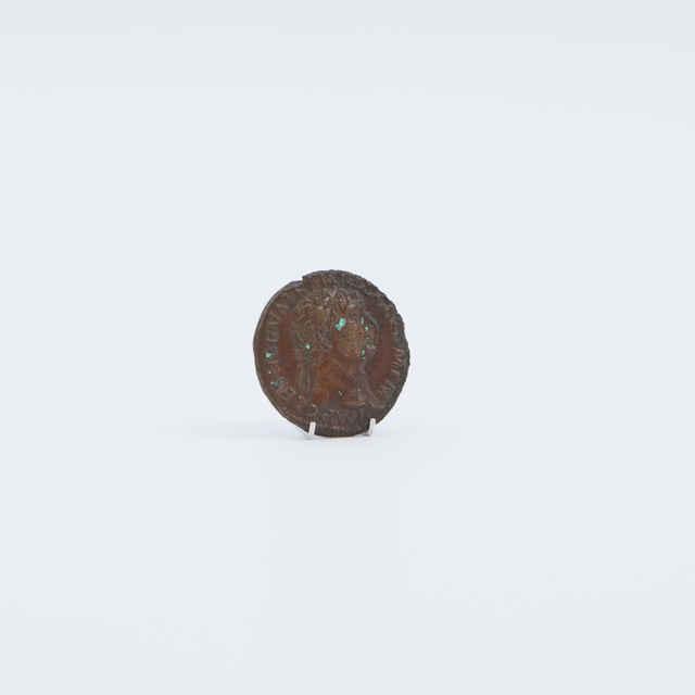 Minca bronzová