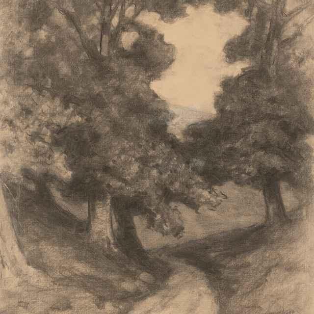 Cesta medzi stromami - Čordák, Ľudovít