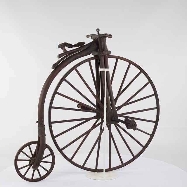 Bicykel z dreva (kostitras)