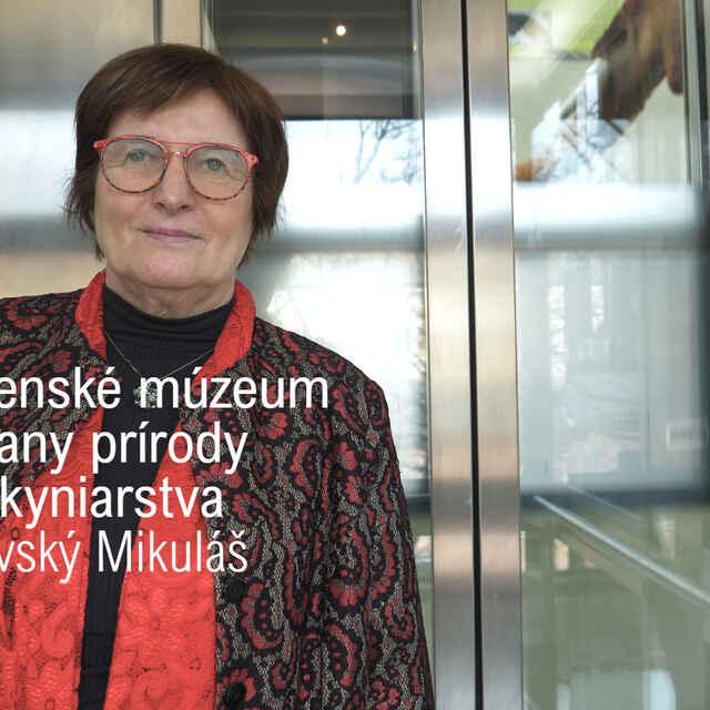 Slovenské múzeum ochrany prírody a jaskyniarstva v Liptovskom Mikuláši - Dida, Daniel