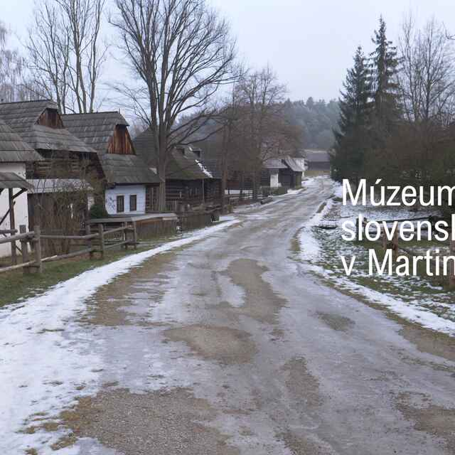 Múzeum slovenskej dediny v Martine - Dida, Daniel
