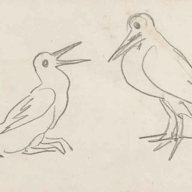 Náčrt vtákov - Weisz-Kubínčan, Arnold Peter