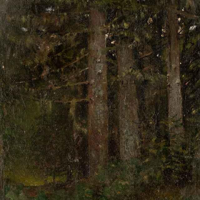Vnútro lesa II. - Mednyánszky, Ladislav