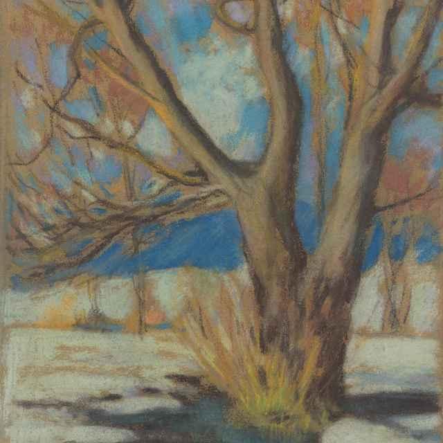 Štúdia holého stromu v zime - Palugyay, Zolo