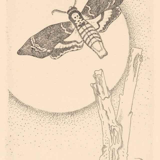 Ilustrácia 4. k Máchovmu Máju - Galanda, Mikuláš