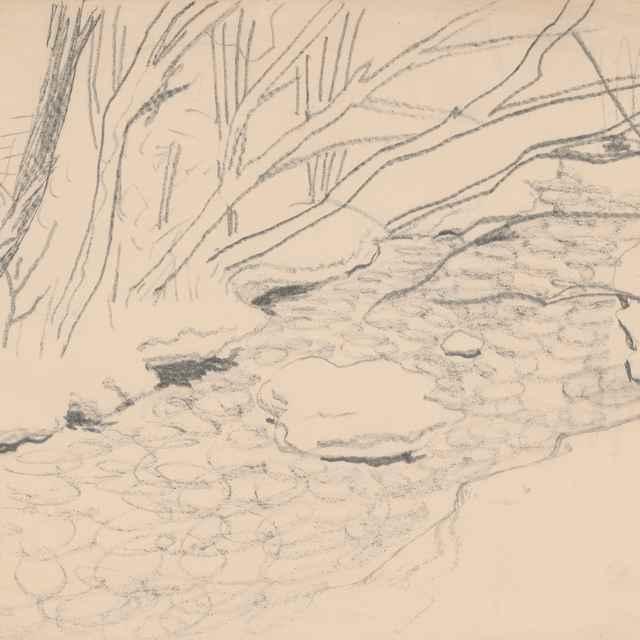 <u>Stromy</u> pri potoku
