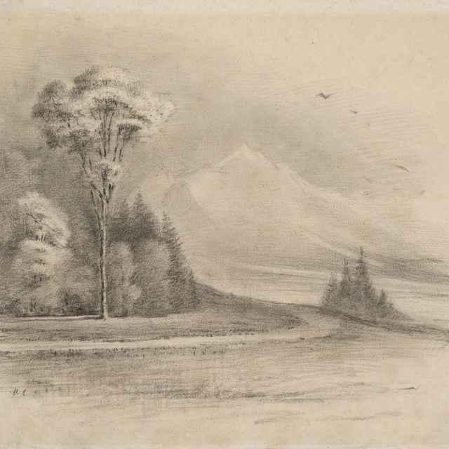 Krajina so stromom - Mednyánszky, Ladislav