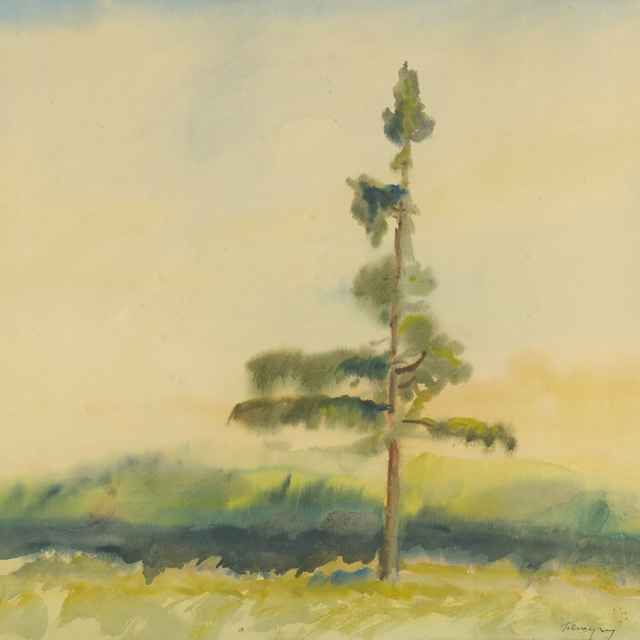 Osamelý strom - Palugyay, Zolo - Výtvarné umenie