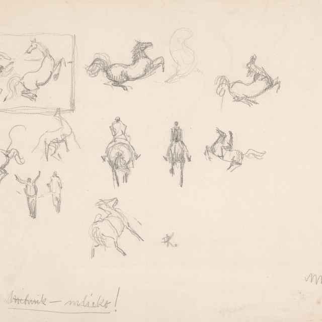 Štúdia koňa - Weisz-Kubínčan, Arnold Peter