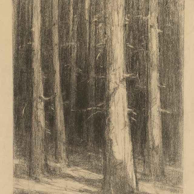 Pne stromov - Čordák, Ľudovít