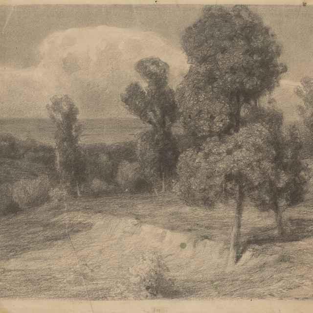 Krajina so stromami v letnom slnci - Čordák, Ľudovít