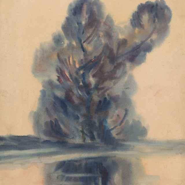 Modrý strom nad jazerom - Palugyay, Zolo
