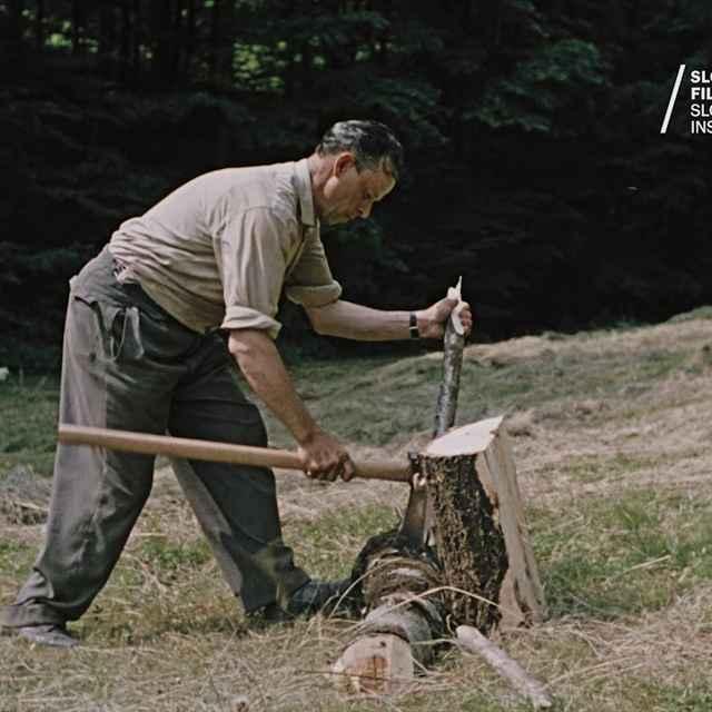 Obyčajné drevo - Skřipský, Karol