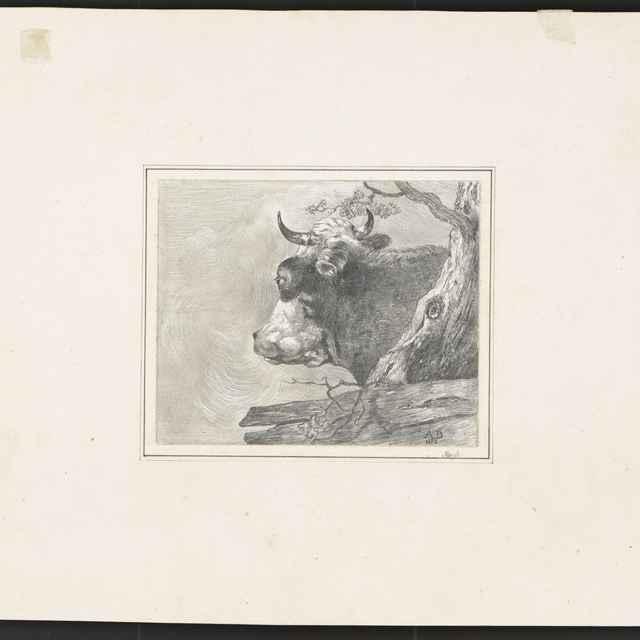 Ceruzokresba, Dionýz Andrássy: Krava, 1852 - Andrássy, Dionýz