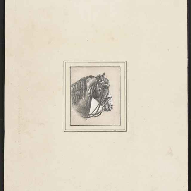 Ceruzokresba, Dionýz Andrássy: Hlava koňa z profilu - Andrássy, Dionýz