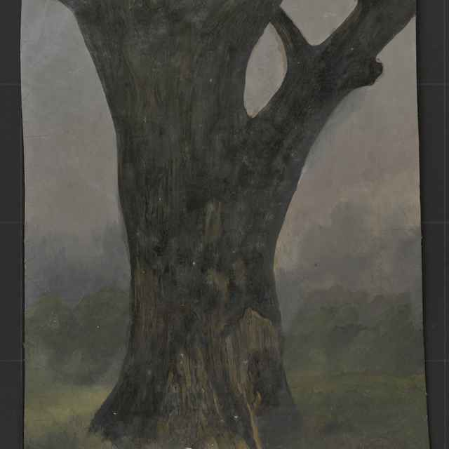 Olej na plátne, Dionýz Andrássy: Strom - štúdia - Andrássy, Dionýz