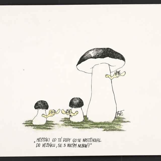 Kresba Františka Fukšu z Habartova