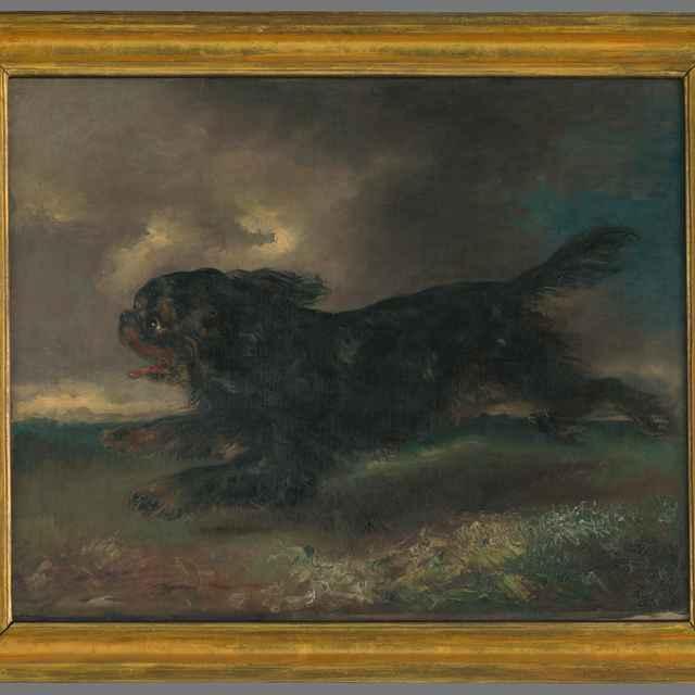 Bežiaci pes - Krüger, Franz