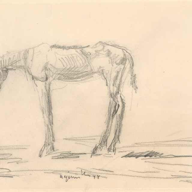 Vychudnutý koník - Majerník, Cyprián