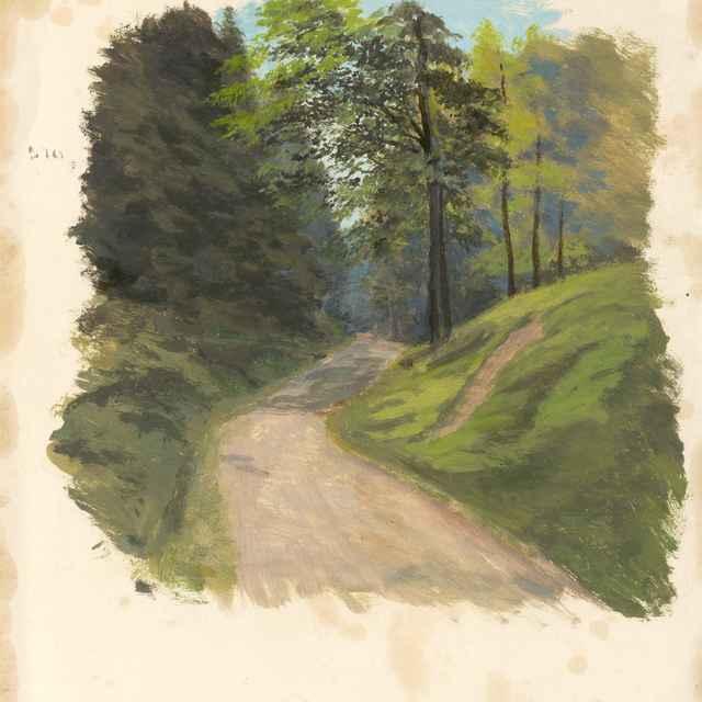 Cesta do hory - Novopacký, Jan