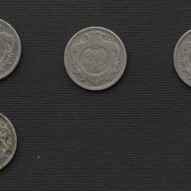 Minca niklová 1894, 20 haliernik
