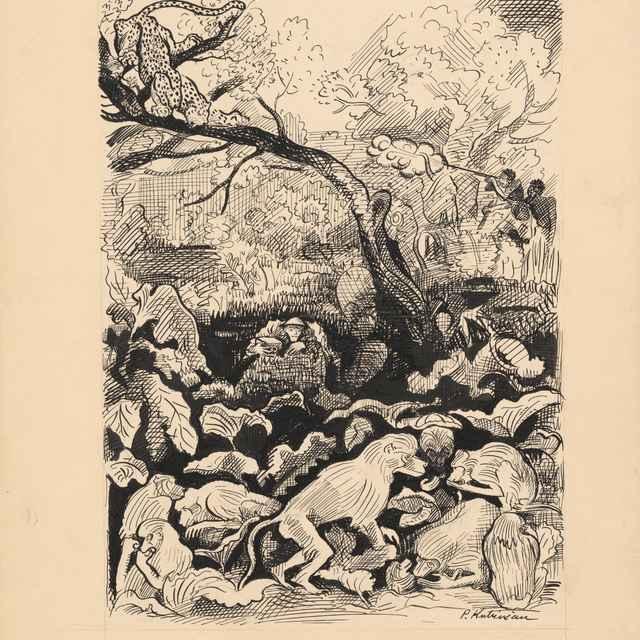 Príbehy v divočine - 1 - Weisz-Kubínčan, Arnold Peter