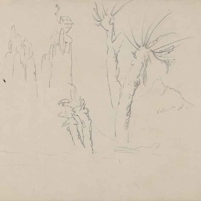 Štúdie stromov a skál