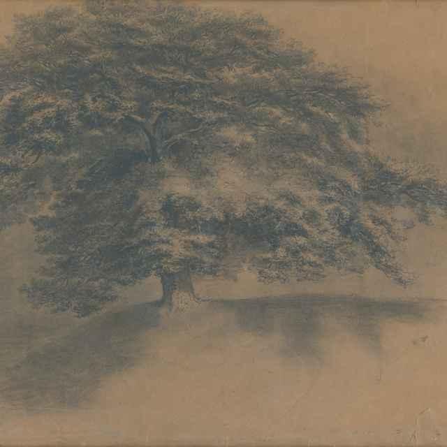 Strom - Mednyánszky, Ladislav - Výtvarné umenie