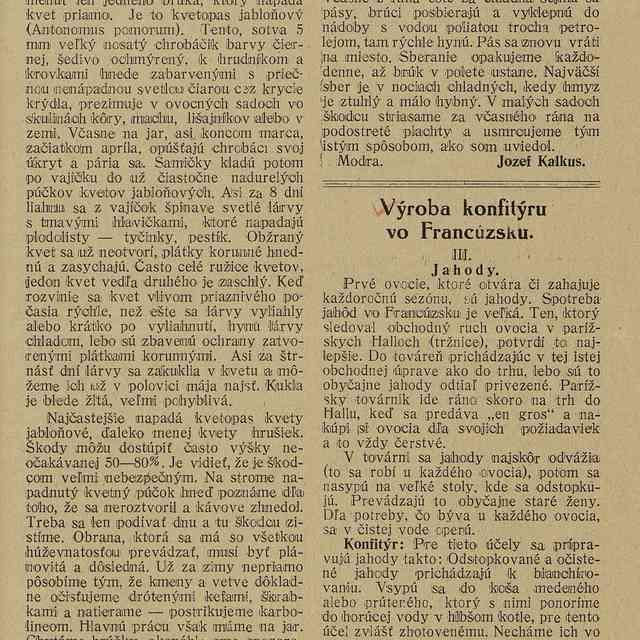 Výroba konfitýru vo Francúzsku - Linduška, Jozef