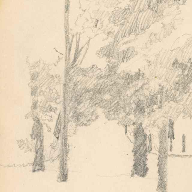 Stromy - Žabota, Ivan