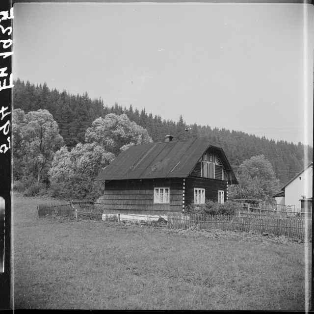 Fotonegatív čiernobiely Makov