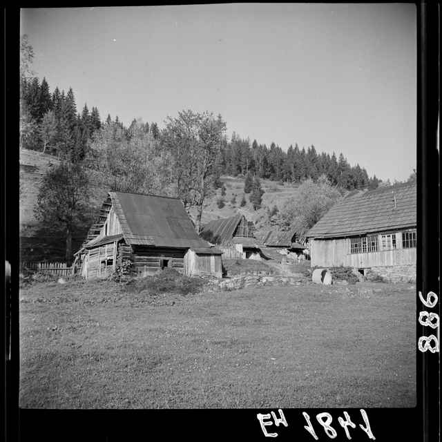 Fotonegatív čiernobiely Harvelka
