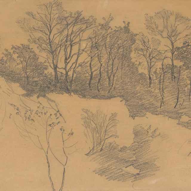 Krajina so stromami - Katona, Ferdinand